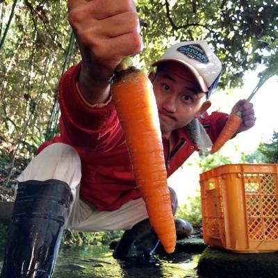 和歌山県橋本市で自然農法による農業をしています、海自然農苑の白崎海ですよろしくお願いします!