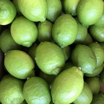 【有機JAS認証】オーガニックグリーンレモン本格販売開始!