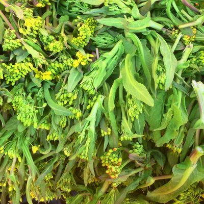 冬越え*レアー!野沢菜や小松菜の菜花1kg~農薬/化学肥料・不使用
